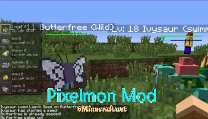 pixelmon how to use items on pokemon